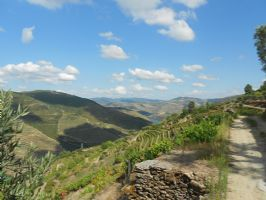 Valleys of the Douro