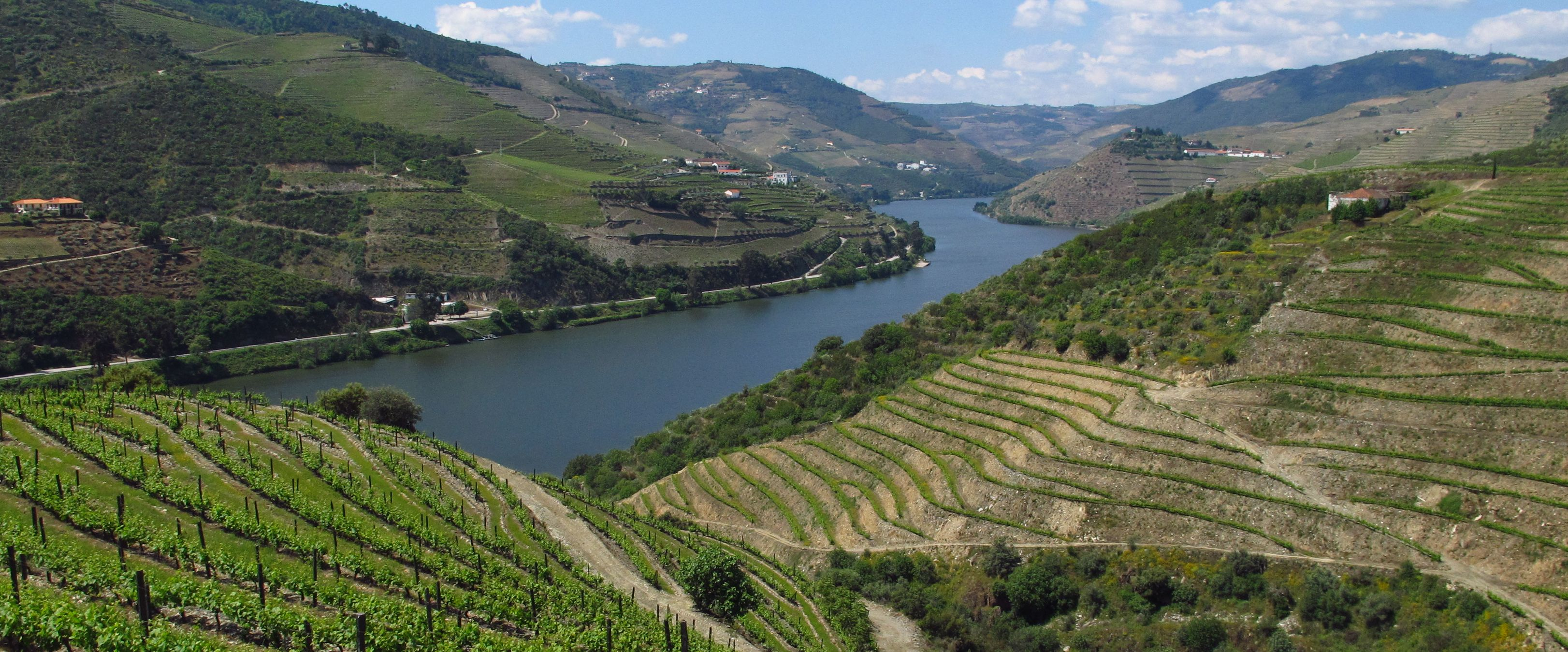 Guided Douro, the River Heritage